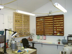 Mold Shelves