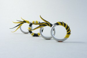 Rings, Ian Henderson, from the Zoa Chimerum series