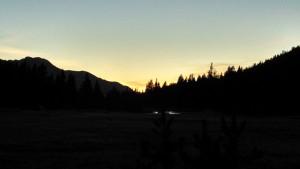 Sequoia sunset, sm