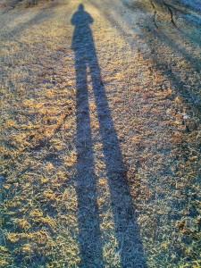 frosty shadow, sm